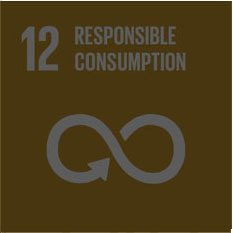 dev-goal-12-responsible-consumption-sustainableenergy
