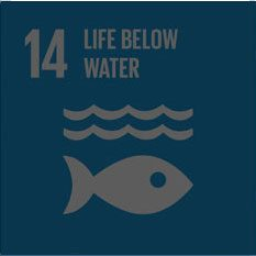dev-goal-14-life-below-water-sustainableenergy