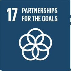 dev-goal-17-partnerships-for-goals-sustainableenergy